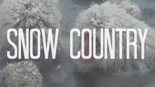 Yukiguni: Snow Country